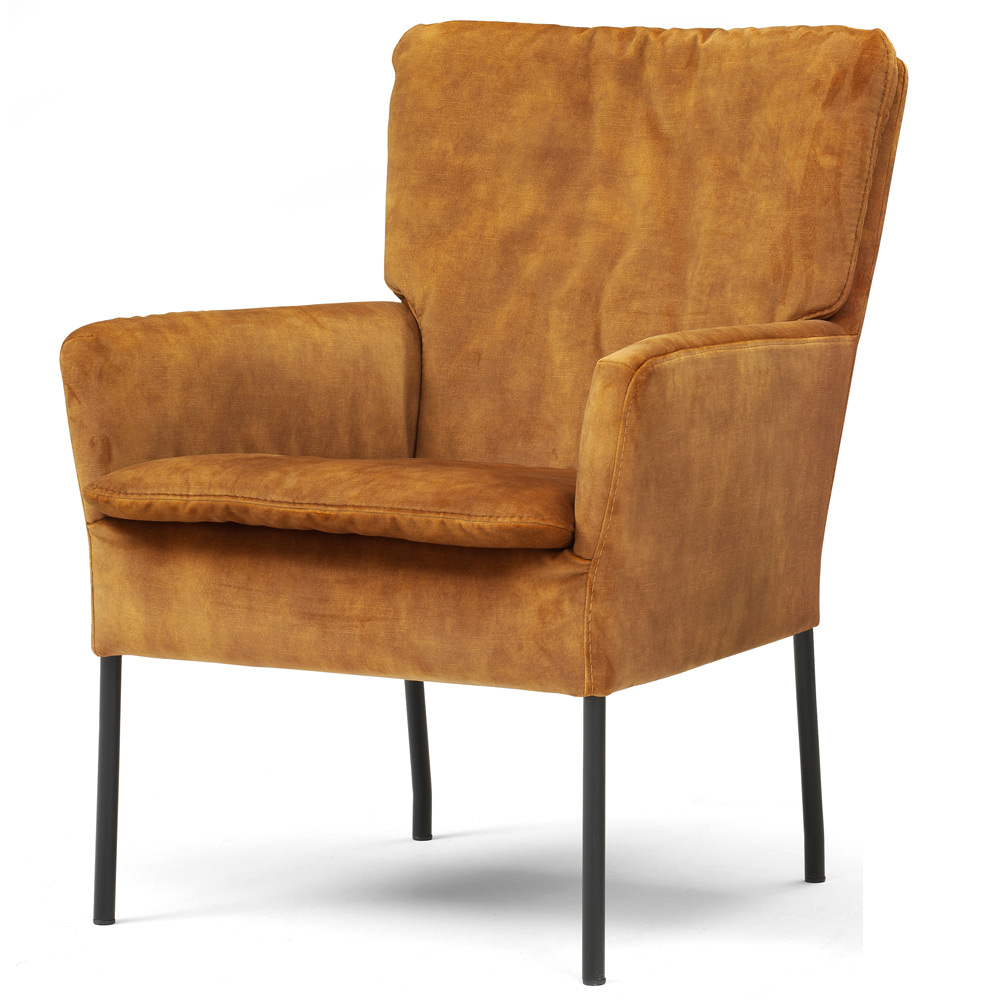 Fauteuil Hulst